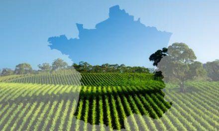 Image illustrant l'article Agriculture-française-448x283 de Clio Prépas