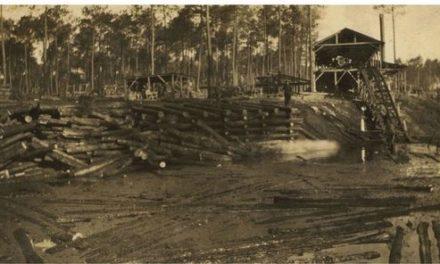 Image illustrant l'article Forestiers de Clio Prépas