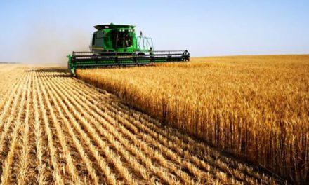 Image illustrant l'article agriculture de Clio Prépas