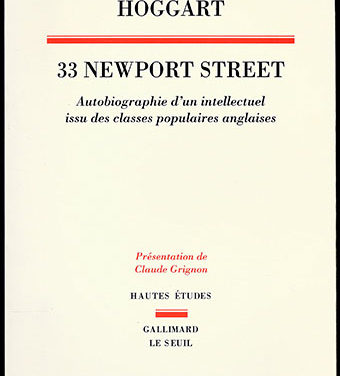 33 Newport Street, Autobiographie d'un intellectuel issu des classes populaires anglaises