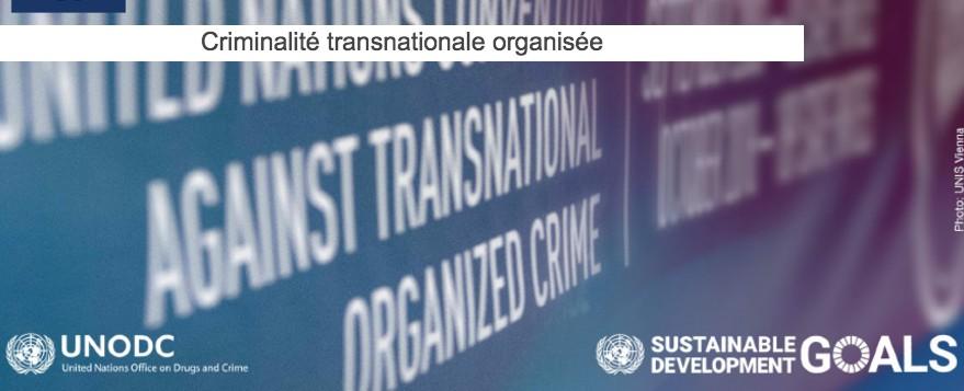 La criminalité transnationale